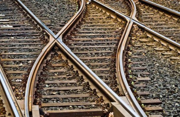 Три трамвайных маршрута изменятся из-за работ на Среднеохтинском проспекте