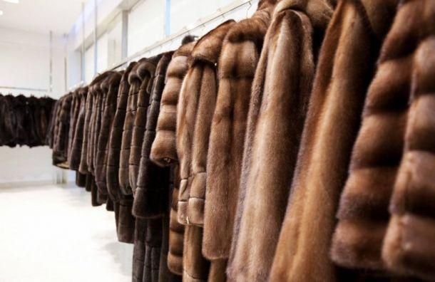 «Бизнес леди» обманули петербурженку на полмиллиона руб.