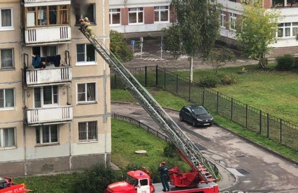 Пожарные спасли жителя города Колпино из горящей квартиры