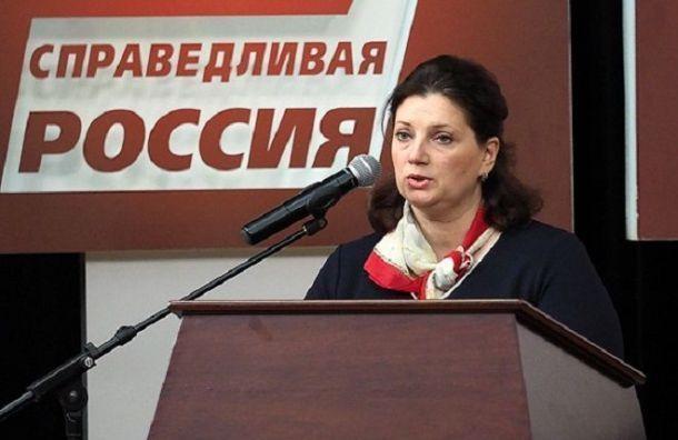 Надежда Тихонова требует отменить решение об избиркомах вне Санкт-Петербурга