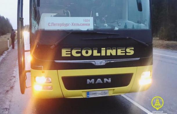 Автобус компании Ecolines совершил наезд на насмерть пешехода в Ленобласти