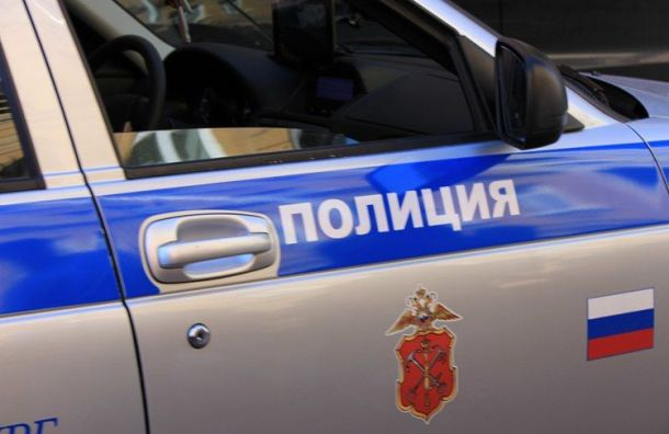 Задержаны рецидивисты, ограбившие дом в Коцелово в присутствии хозяйки
