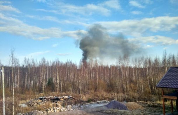 Ангары загорелись в бизнес-парке «Мартышкино»