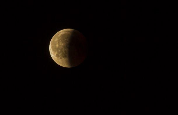 Жители Санкт-Петербурга и Ленобласти смогут ночью увидеть затмение