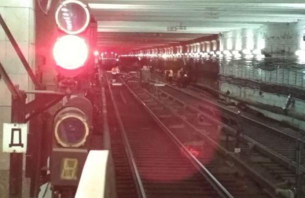 Вестибюль станции «Девяткино» закрыли для пассажиров