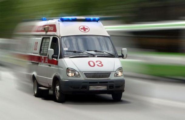Четырехлетнюю девочку нашли мертвой в Коломягах