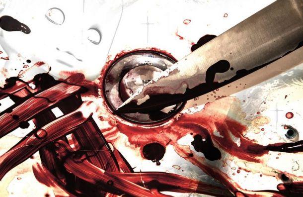 Жителя поселка Парголово ранили ножом в живот