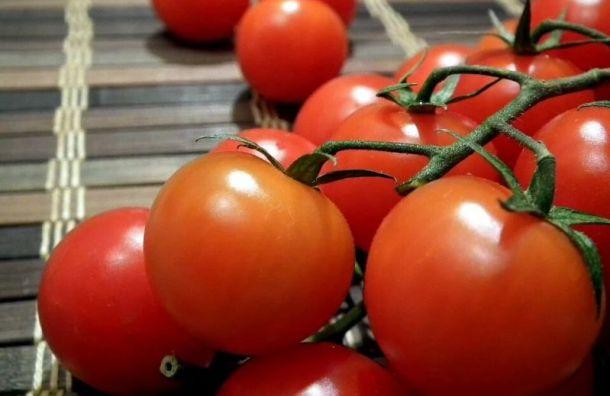 Крупную партию марроканских томатов не пустили в Санкт-Петербург