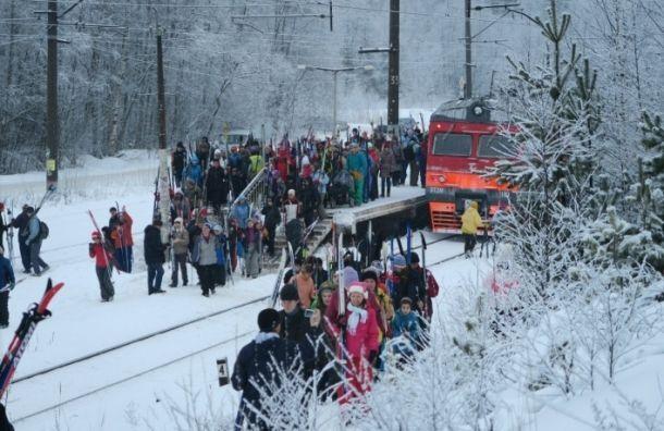 Поезда «Лыжные стрелы» отменили из-за аномально теплой зимы