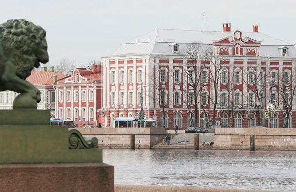 Смольный предложил перенести митинг в защиту СПбГУ на окраину