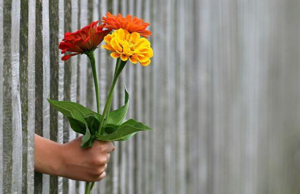 Пьяный романтик украл букет цветов из торгового центра во Всеволожске