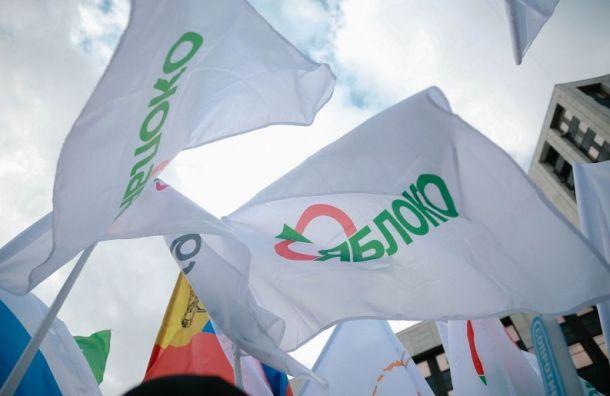 ЦИК отказал в регистрации на выборах четверым кандидатам от «Яблока»