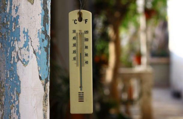 Синоптики рассказали о грядущем потеплении в Санкт-Петербурге