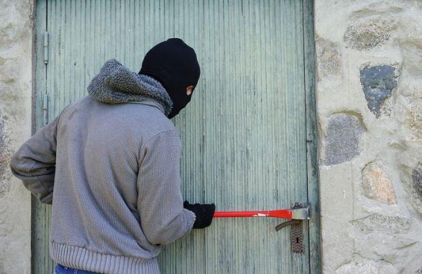 Похитителей бытовой техники задержали в Ленобласти