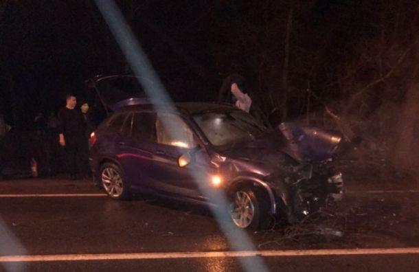 Автомобиль влетел в дерево и перевернулся на Приморском шоссе