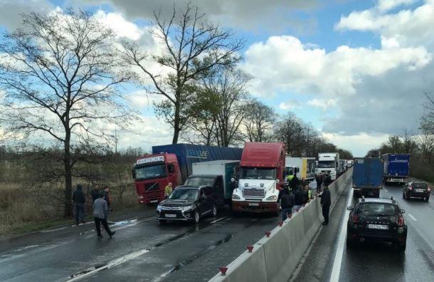 Массовое ДТП на Московском шоссе спровоцировало гигантскую пробку