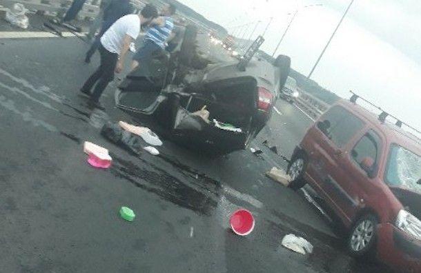Дочь задавила отца-рыбака, когда тот садился в машину на КАД