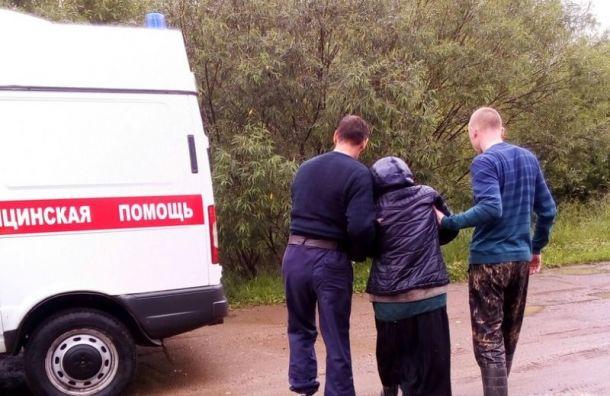 Почти 150 человек заблудились в лесах Ленобласти в июне