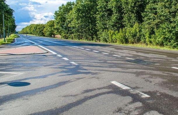 На юге Санкт-Петербурга планируют построить новую скоростную трассу