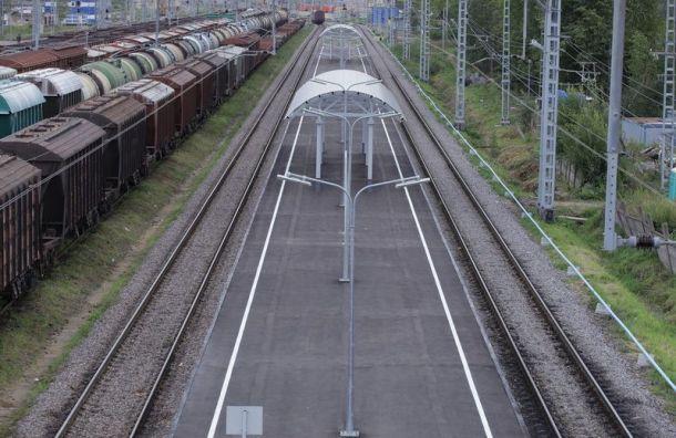 РЖД продает крупный участок земли в Санкт-Петербурге за 520 млн руб.