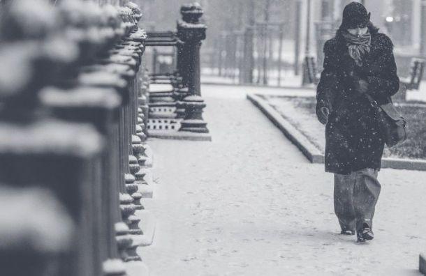 МЧС предупреждает петербуржцев о ветре с порывами до 28 м/с