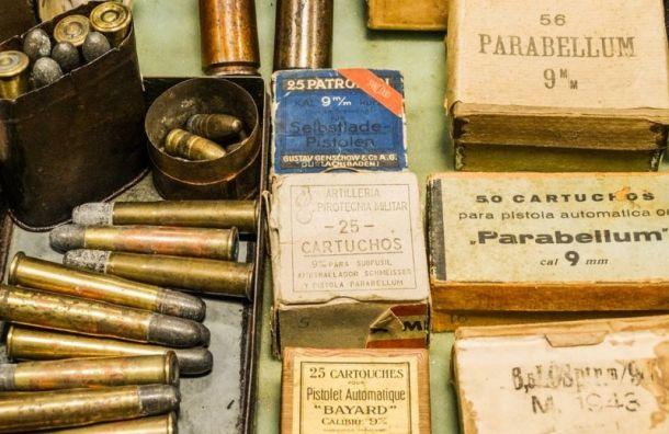 Техника петербургского Госцирка подозревают в хранении оружия