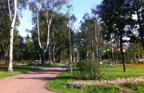 Петербурженка сбежала от насильника в Шкиперском парке