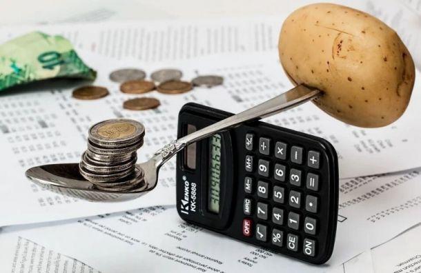 КСП проверит бюджеты поселка Шушары и округа «Георгиевский»