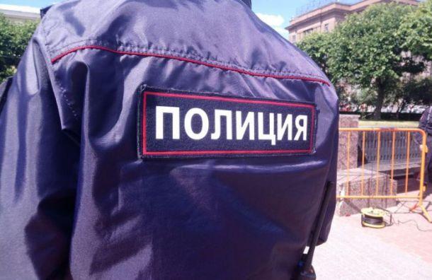 При задержании уличных грабителей в Санкт-Петербурге пострадал полицейский