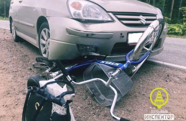 Пенсионер на Suzuki сбил велосипедистку под Гатчиной