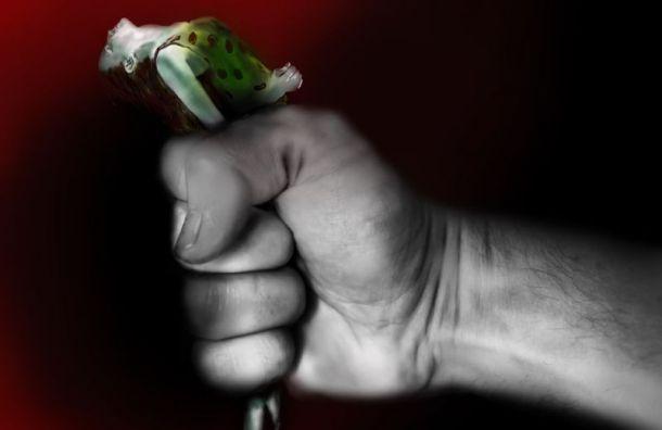 Петербургская студентка сняла документальное кино о домашнем насилии