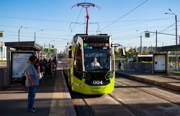 Два новых маршрута «Чижика» запустили в Красногвардейском районе