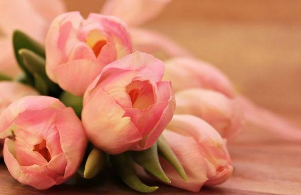 К 8 марта в Санкт-Петербург привезли 734 тонны цветов из Южной Америки, Африки и Азии