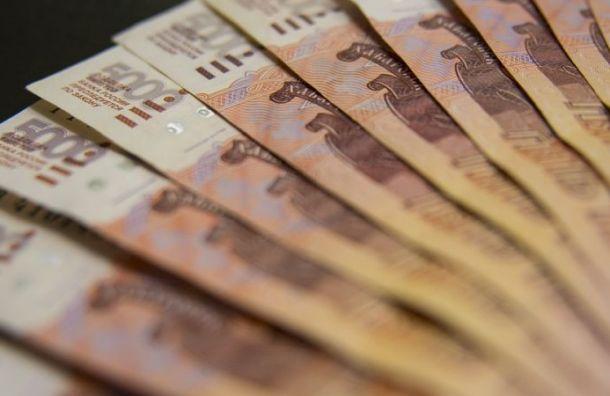 НКО Санкт-Петербурга могут получить субсидии авансом
