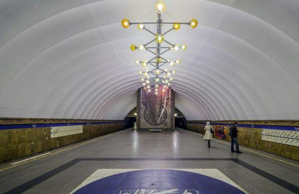 Следовавших в центр пассажиров метро высадили на станции «Проспект Просвещения»
