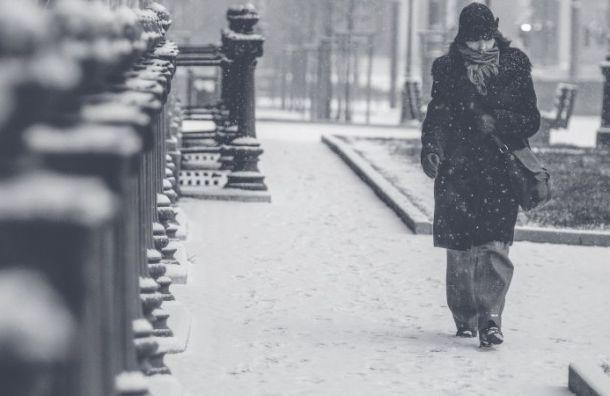 Санкт-Петербург в четверг ждут метель и гололедица