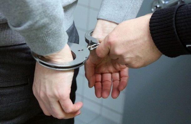 Подозреваемого в убийстве Елены Григорьевой арестовали