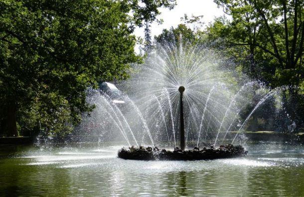 На капремонт фонтанов в Санкт-Петербурге выделят 5,3 млрд руб.