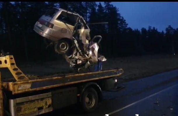 Страшное ДТП под Лугой: водитель легковушки умер на месте