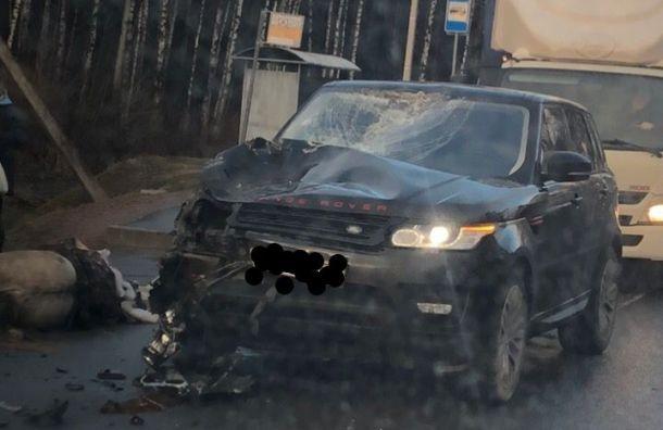 Range Rover совершил наезд на лошадь на Красносельском шоссе