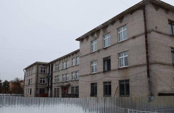 Гимназия в Пушкине: «Хотя бы к следующему году»
