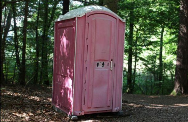 Смольный потратит 241 млн руб. на городские туалеты