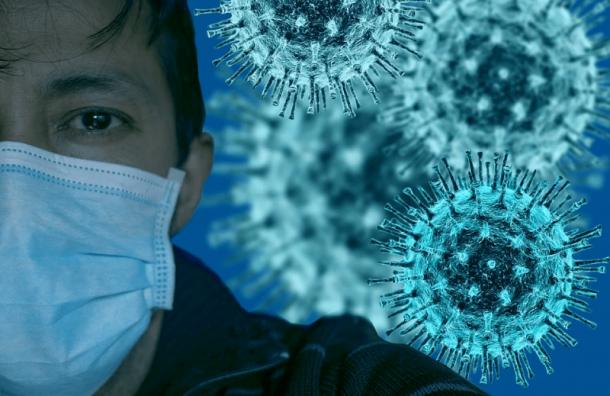 За минувшие сутки в Санкт-Петербурге на коронавирус обследовали свыше 9 тысяч человек