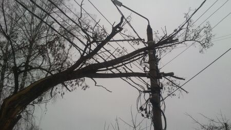 Штормовой ветер в Петербурге повалил 18 светофоров и дорожных знаков
