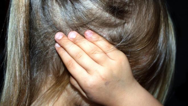 Жительница Колпино получила условный срок за издевательства над своей несовершеннолетней дочерью на протяжении двух лет