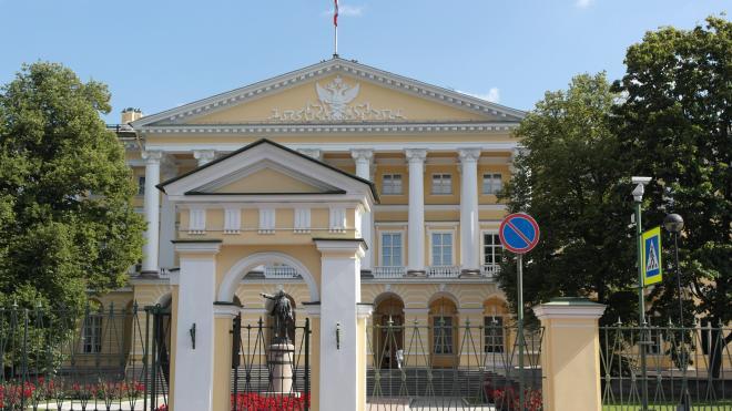 Замглавы администрации Петербурга Ирина Ган ушла из Смольного