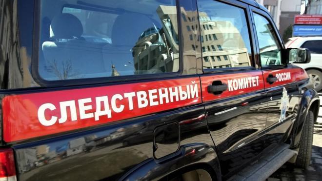 СМИ: СК возбудил дело против убитого дочерями Михаила Хачатуряна