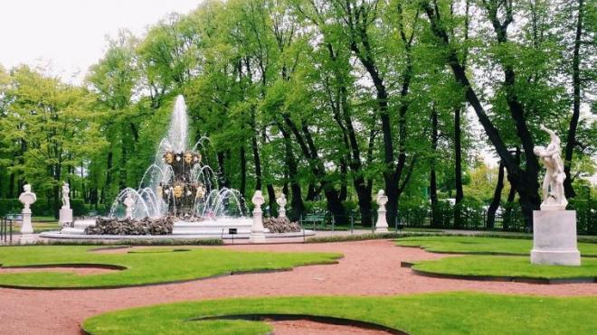 Летний сад в Петербурге откроют с 15 июля