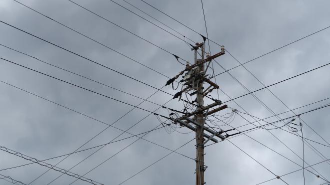 В четверг порывы ветра в Петербурге достигнут 18 м/с