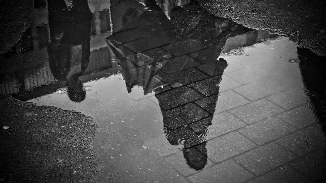 Циклон принесет в Петербург дожди
